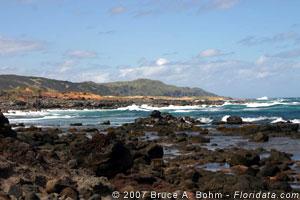 coastline of Molokai