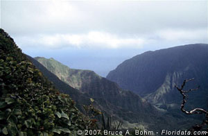 Pelekunu Valley